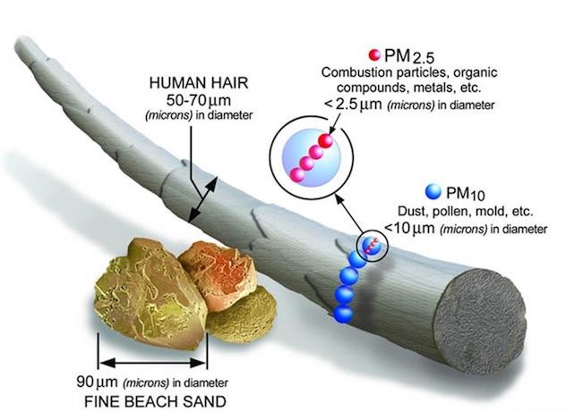 Dimensione particelle inquinanti